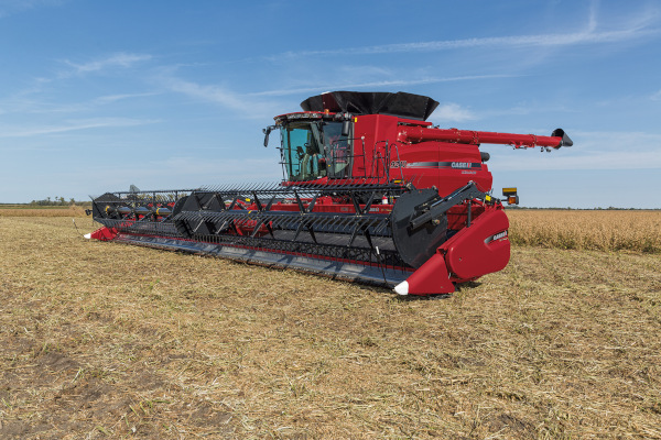 Case IH Farm 3162 Draper Head for sale at American Falls, Blackfoot, Idaho Falls, Rexburg, Rupert, Idaho