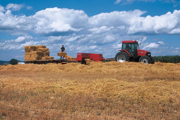 Case IH Farm | Small Square Balers | Model SB521 Small Square Baler for sale at American Falls, Blackfoot, Idaho Falls, Rexburg, Rupert, Idaho