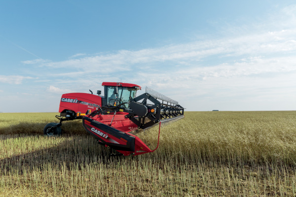 Case IH Farm | Windrowers | Windrowers for sale at American Falls, Blackfoot, Idaho Falls, Rexburg, Rupert, Idaho